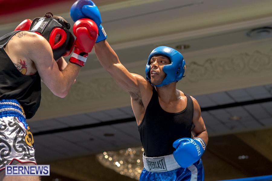 Bermuda-Boxing-JM-Nov-2015-48