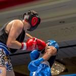 Bermuda Boxing JM Nov 2015 (49)