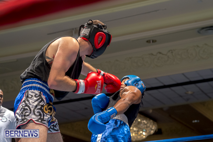 Bermuda-Boxing-JM-Nov-2015-49
