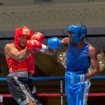Bermuda Boxing JM Nov 2015 (5)