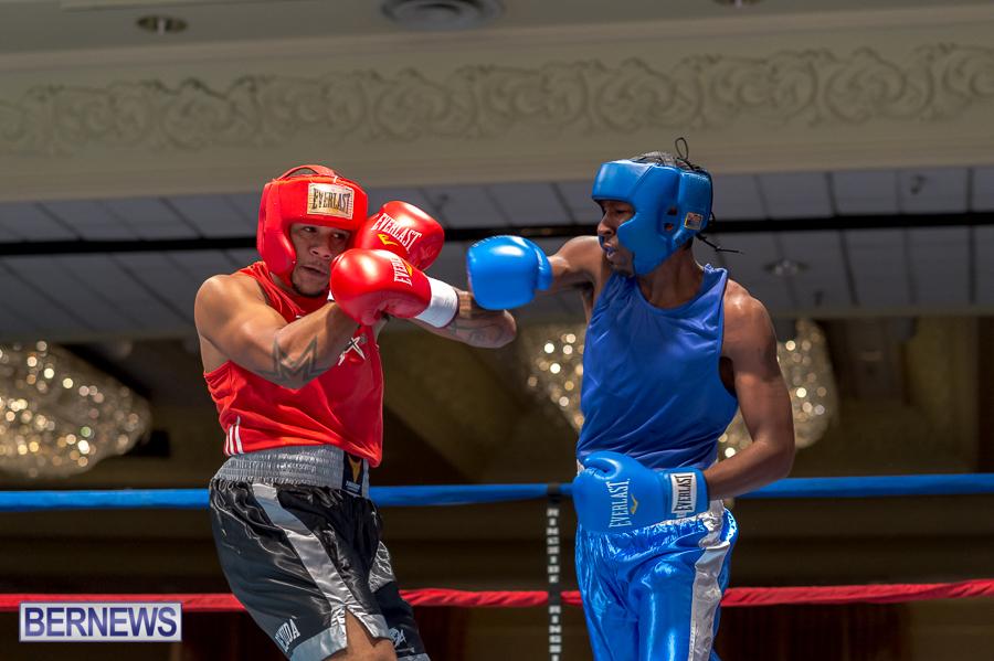 Bermuda-Boxing-JM-Nov-2015-5