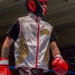 Bermuda Boxing JM Nov 2015 (50)