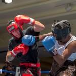 Bermuda Boxing JM Nov 2015 (53)