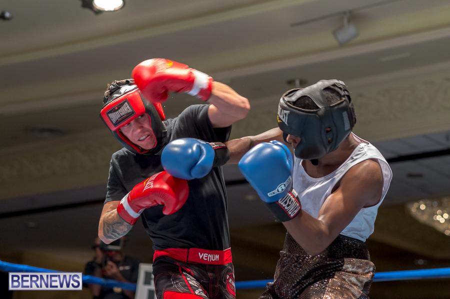 Bermuda-Boxing-JM-Nov-2015-53
