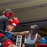 Bermuda Boxing JM Nov 2015 (54)