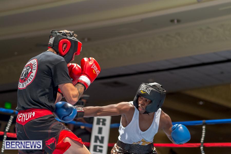 Bermuda-Boxing-JM-Nov-2015-54
