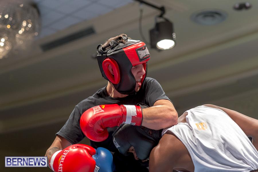 Bermuda-Boxing-JM-Nov-2015-55