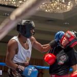 Bermuda Boxing JM Nov 2015 (56)