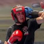 Bermuda Boxing JM Nov 2015 (59)