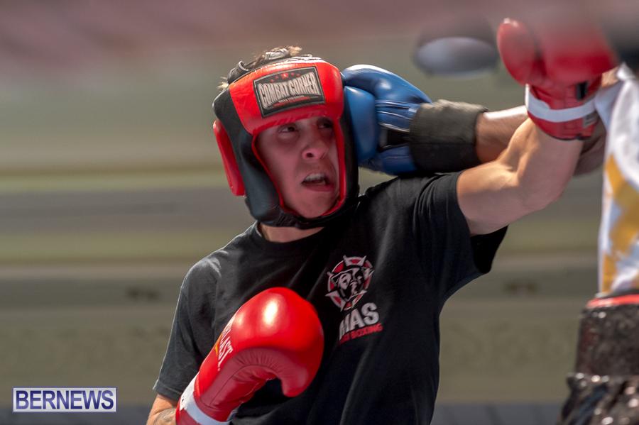 Bermuda-Boxing-JM-Nov-2015-59