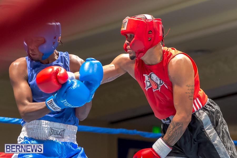 Bermuda-Boxing-JM-Nov-2015-6