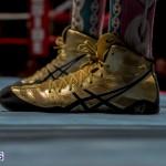 Bermuda Boxing JM Nov 2015 (61)