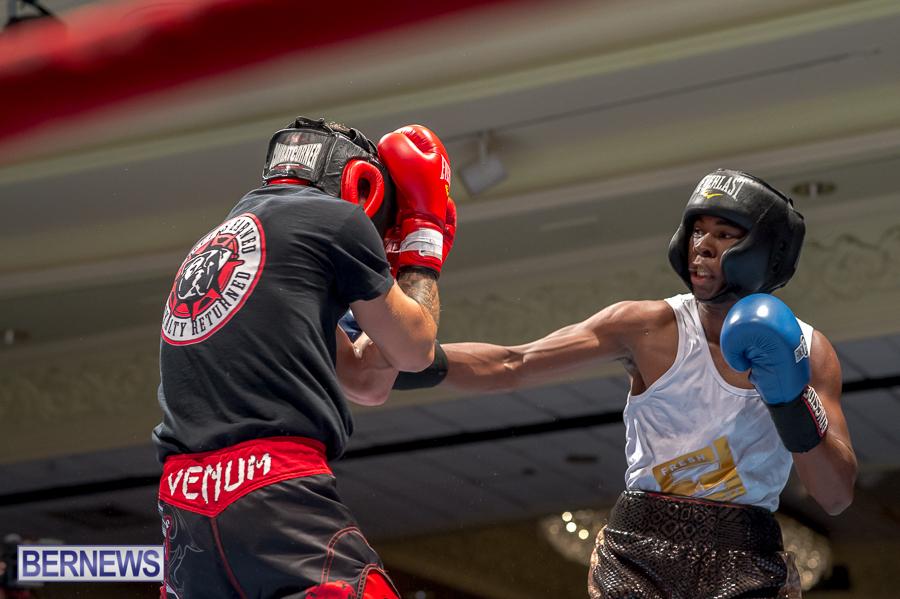 Bermuda-Boxing-JM-Nov-2015-63
