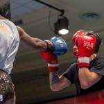 Bermuda Boxing JM Nov 2015 (65)