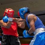 Bermuda Boxing JM Nov 2015 (7)