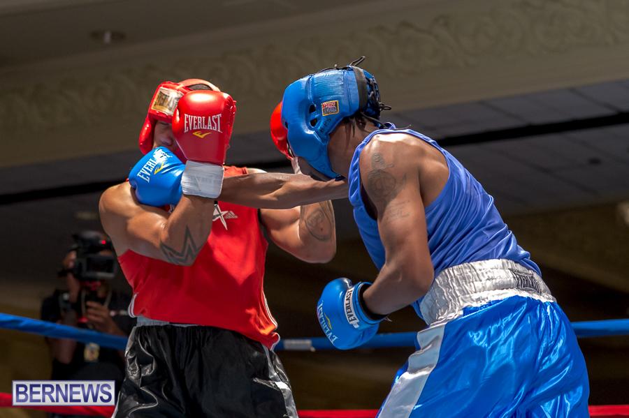 Bermuda-Boxing-JM-Nov-2015-7
