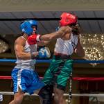 Bermuda Boxing JM Nov 2015 (70)
