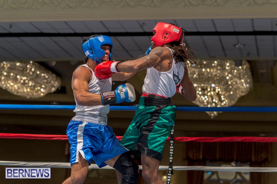 Bermuda-Boxing-JM-Nov-2015-70
