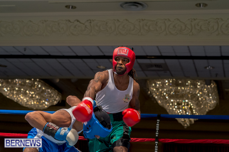 Bermuda-Boxing-JM-Nov-2015-71