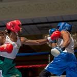 Bermuda Boxing JM Nov 2015 (72)