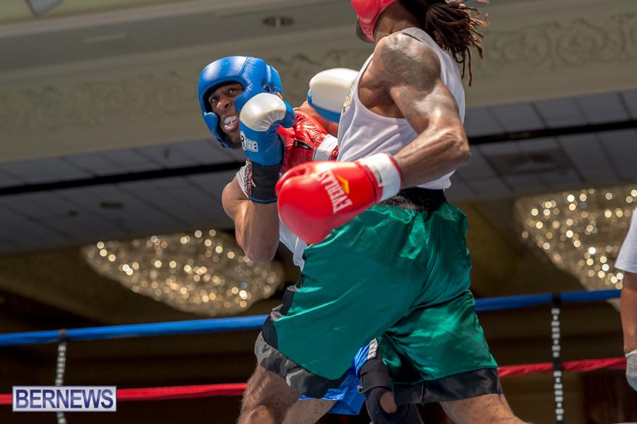 Bermuda-Boxing-JM-Nov-2015-74