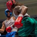 Bermuda Boxing JM Nov 2015 (75)