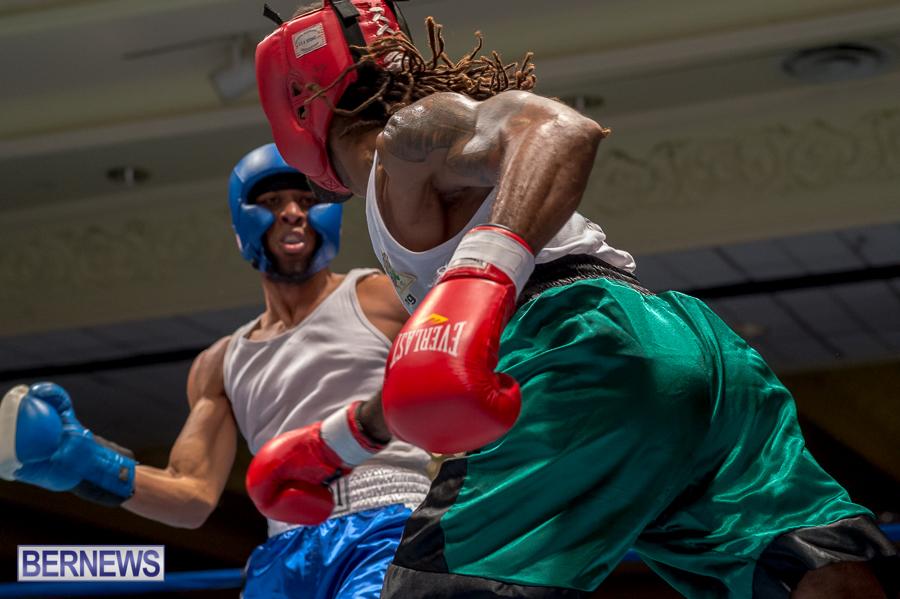 Bermuda-Boxing-JM-Nov-2015-75