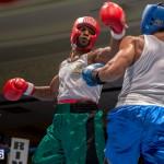 Bermuda Boxing JM Nov 2015 (77)