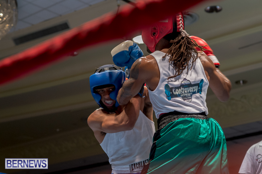 Bermuda-Boxing-JM-Nov-2015-78