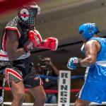 Bermuda Boxing JM Nov 2015 (80)