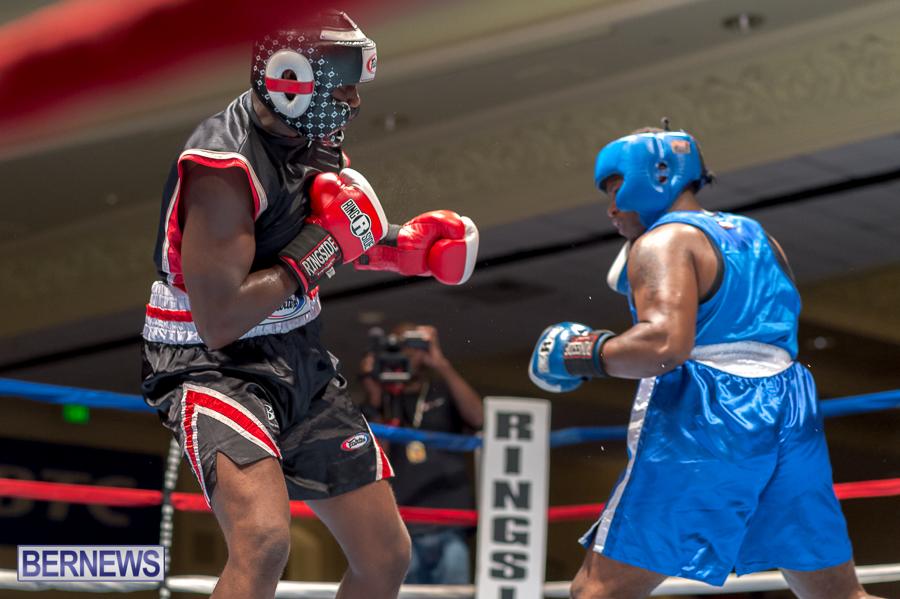 Bermuda-Boxing-JM-Nov-2015-80