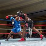 Bermuda Boxing JM Nov 2015 (81)