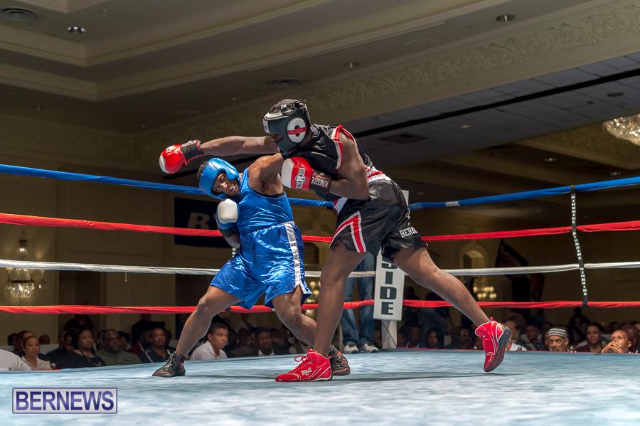Bermuda-Boxing-JM-Nov-2015-81