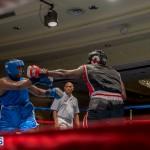 Bermuda Boxing JM Nov 2015 (82)