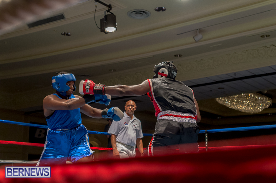 Bermuda-Boxing-JM-Nov-2015-82