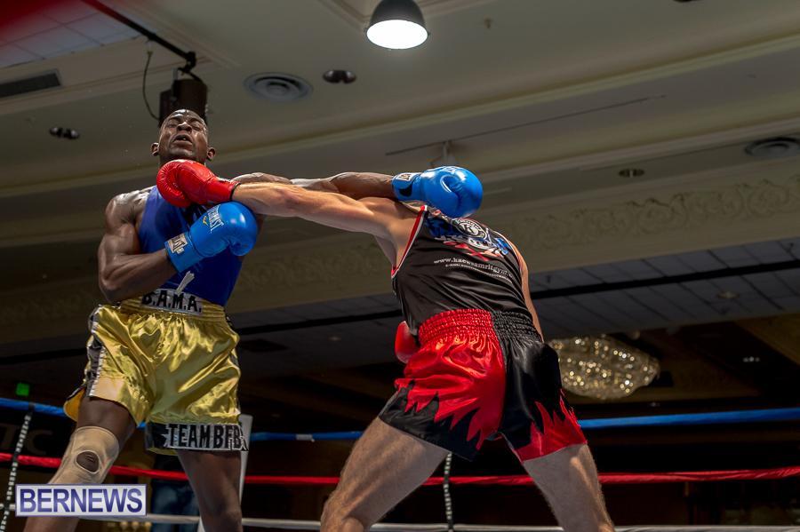 Bermuda-Boxing-JM-Nov-2015-96