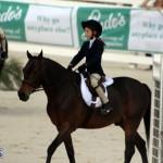 Bermuda Equestrian Nov 11 2015 (12)