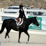 Bermuda Equestrian Nov 11 2015 (15)