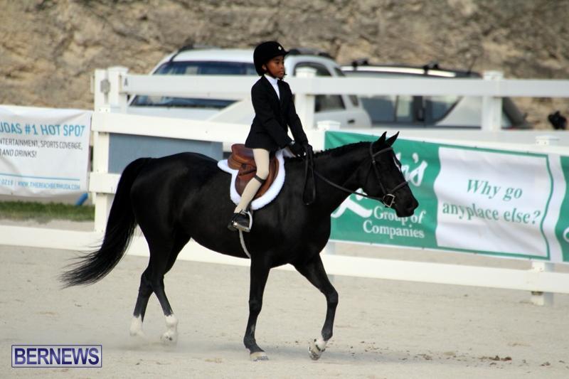 Bermuda-Equestrian-Nov-11-2015-15
