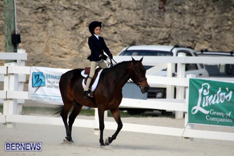 Bermuda-Equestrian-Nov-11-2015-17