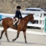 Bermuda Equestrian Nov 11 2015 (18)