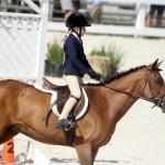 Bermuda Equestrian Nov 11 2015 (3)