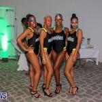Bermuda Heroes Weekend Launch, November 20 2015-11