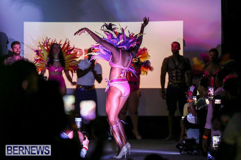 Bermuda-Heroes-Weekend-Launch-November-20-2015-14