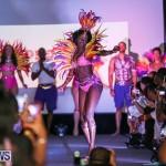 Bermuda Heroes Weekend Launch, November 20 2015-15