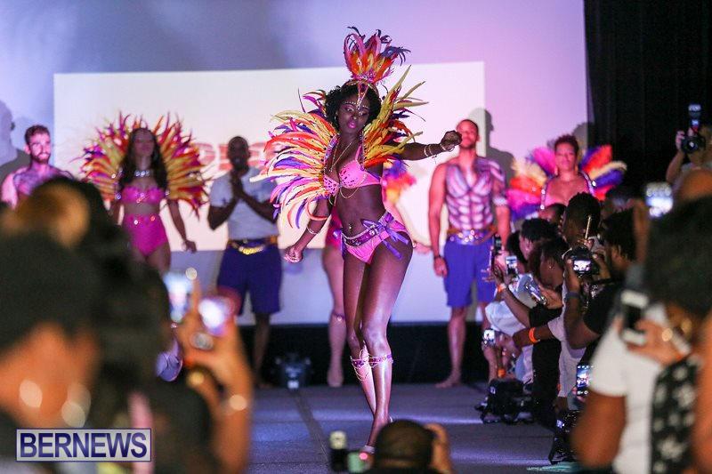 Bermuda-Heroes-Weekend-Launch-November-20-2015-15