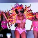 Bermuda Heroes Weekend Launch, November 20 2015-16