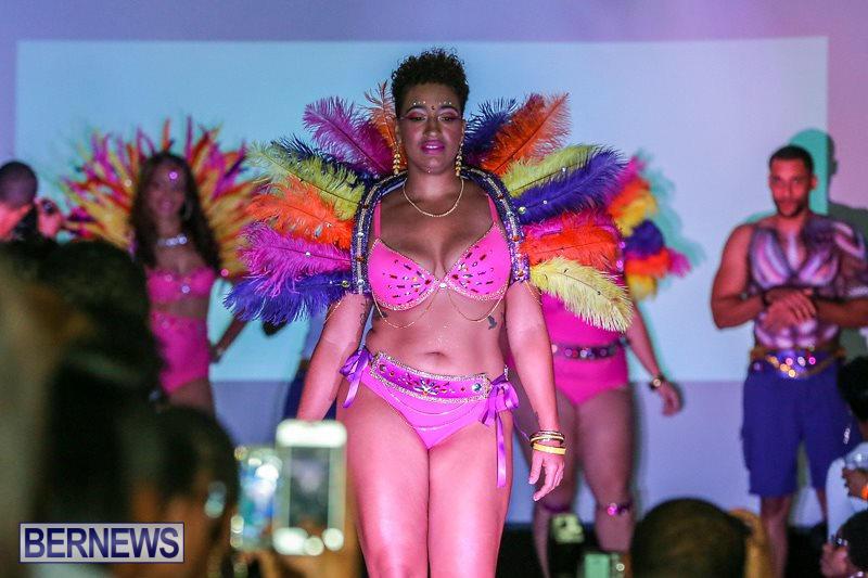 Bermuda-Heroes-Weekend-Launch-November-20-2015-17