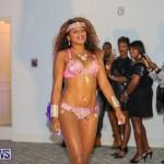 Bermuda Heroes Weekend Launch, November 20 2015-24