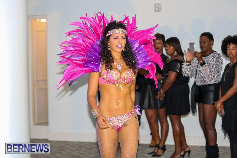 Bermuda-Heroes-Weekend-Launch-November-20-2015-25